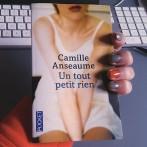 «Un tout petit rien», de Camille Anseaume