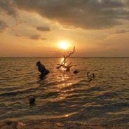 Mon voyage en Indonésie : Bali, Gili Trawangan, Lombok…